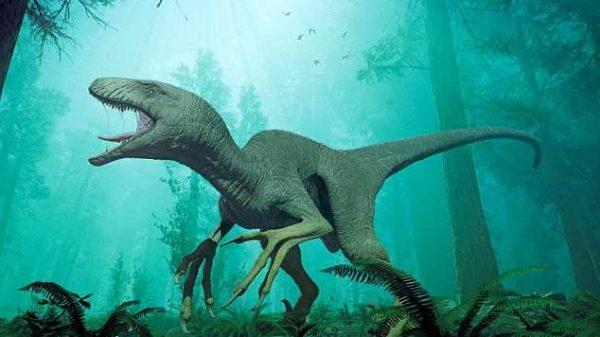Hindistonda dinozavrning hayratlanarli qoldiqlari topildi (foto)