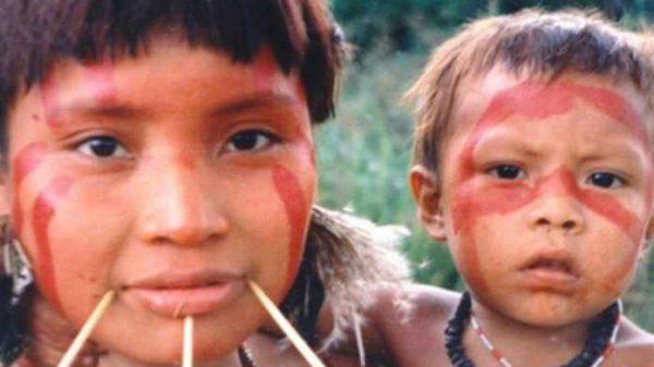 Amazonkada yashovchi yovvoyi odamlar qabilasi qon bosimi oshishi, infarkt, insult kabi xastaliklar neligini bilmaskan…