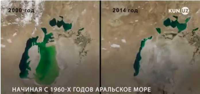 Eksklyuziv suhbat: O'zbekistonda Orol dengizini 7 yil ichida qayta tiklaydigan texnologiya ishlab chiqildi (video)