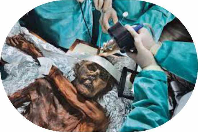 G'aroyib hodisalar izidan: ZIMILAUN MUZLIGI MAHBUSI… (yoki 500 yil umr ko'rgan yigit)