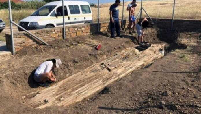 Photo of Gretsiyada arxeologlar toshga aylangan 20 million yillik daraxtni topdi
