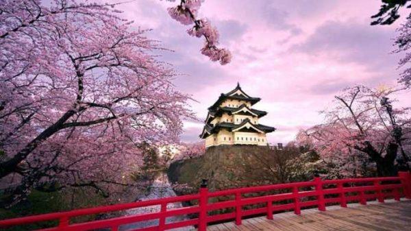 Yaponiyada nega bitta ham chiqindi uyumlari uchramaydi?