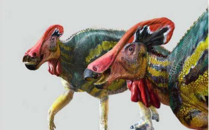 Meksikada dinozavrlarning yangi turlari paydo bo'ldi, ular kuchli qichqiriq ovozi bilan dushmanlarni qo'rqitadilar
