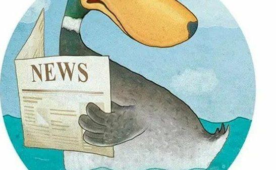 Nega yolg'on xabarlar – «gazeta o'rdaklari» deb ataladi?